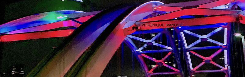 Houston's Bridge